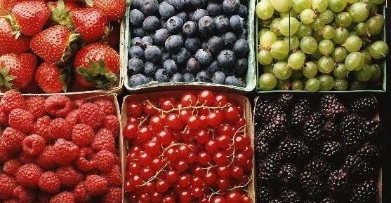 Fructe permacultura romania