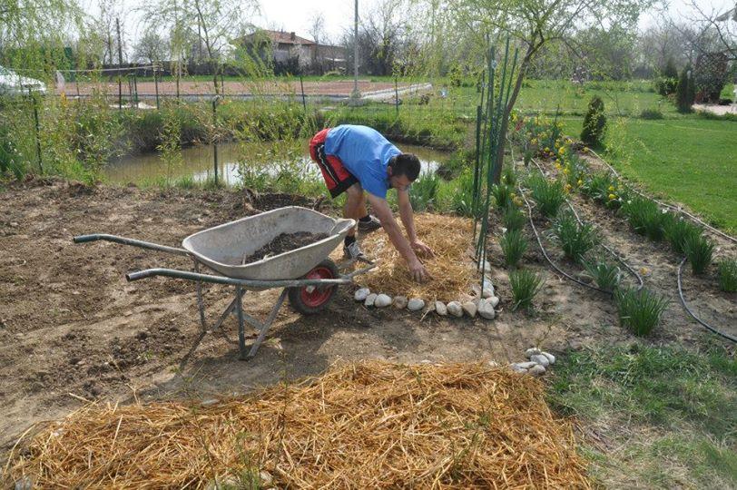 Gradina permacultura romania
