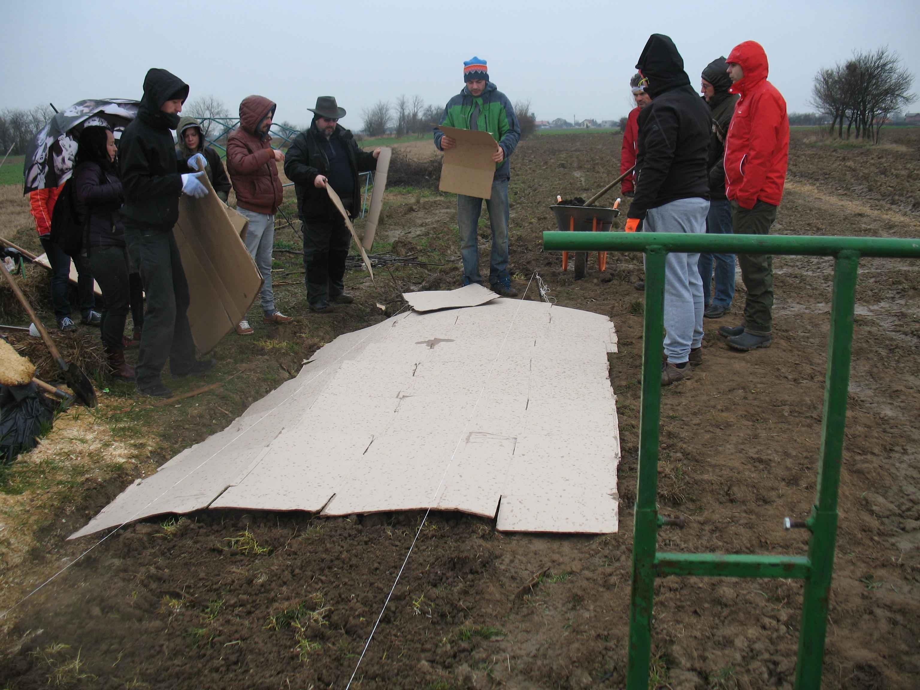 Gradina de permacultura - intinderea cartoanelorGradina de permacultura - intinderea cartoanelor
