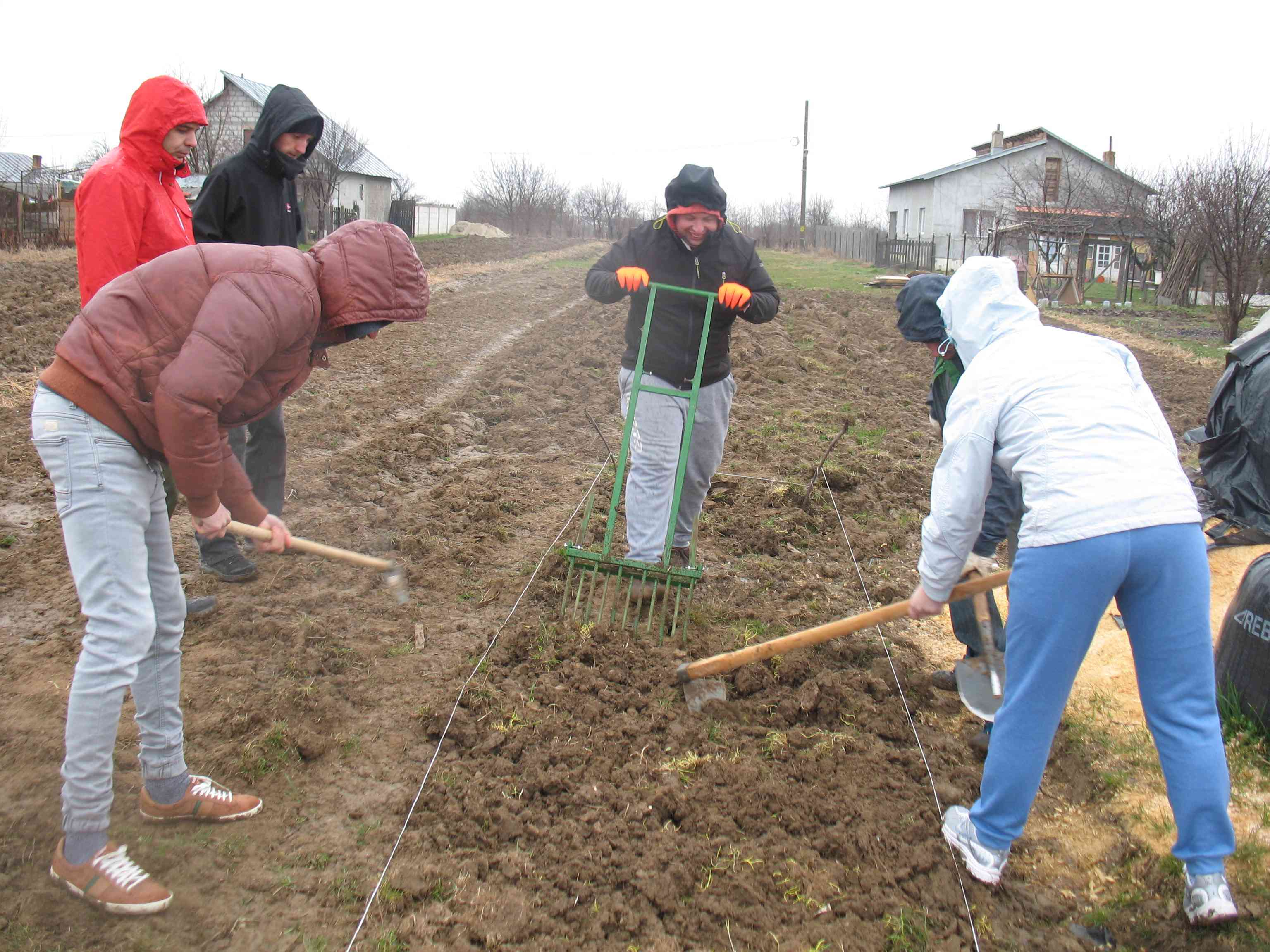 Gradina de permacultura - maruntirea solului