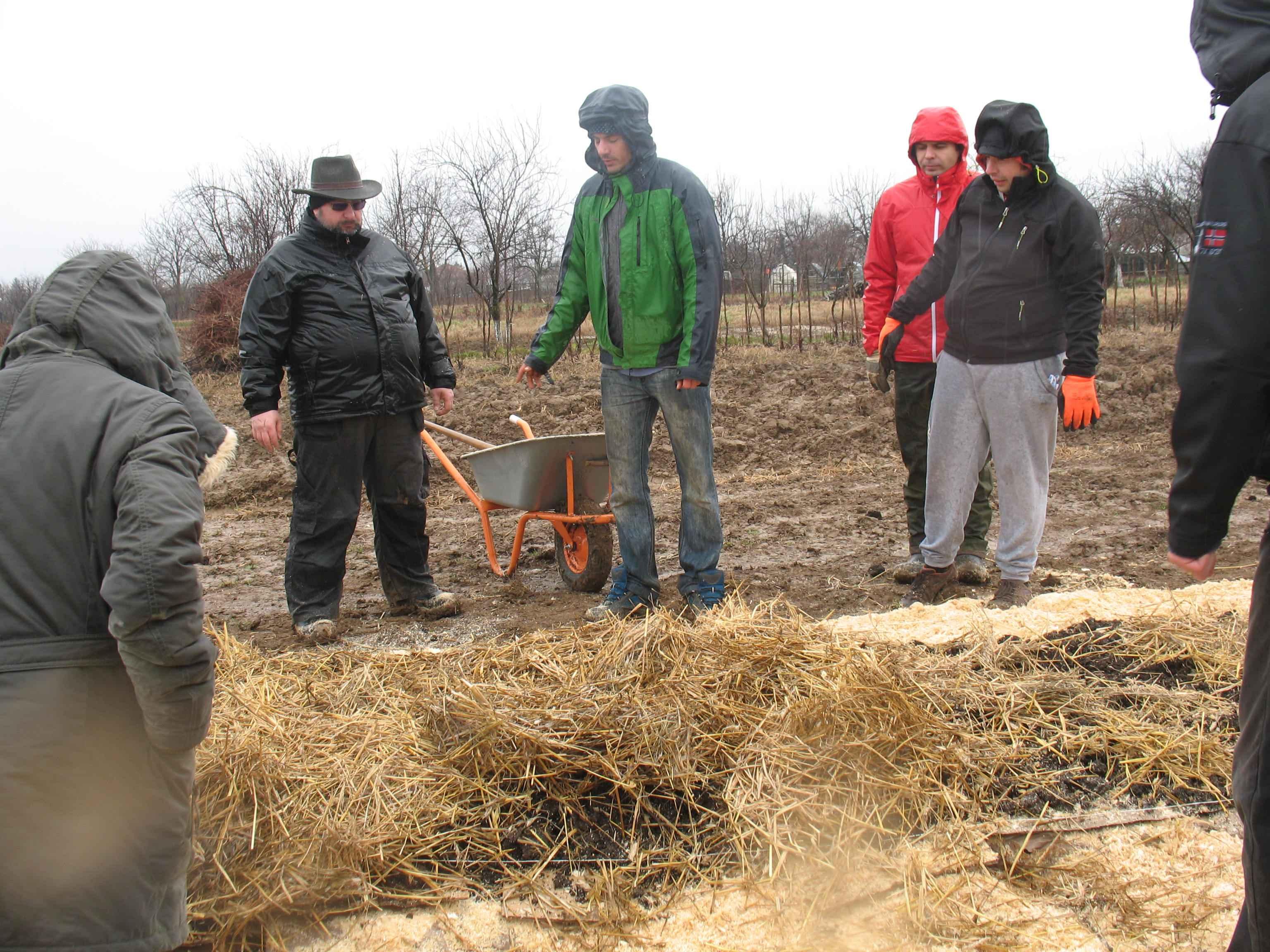 Gradina de permacultura - mulcirea cu paie