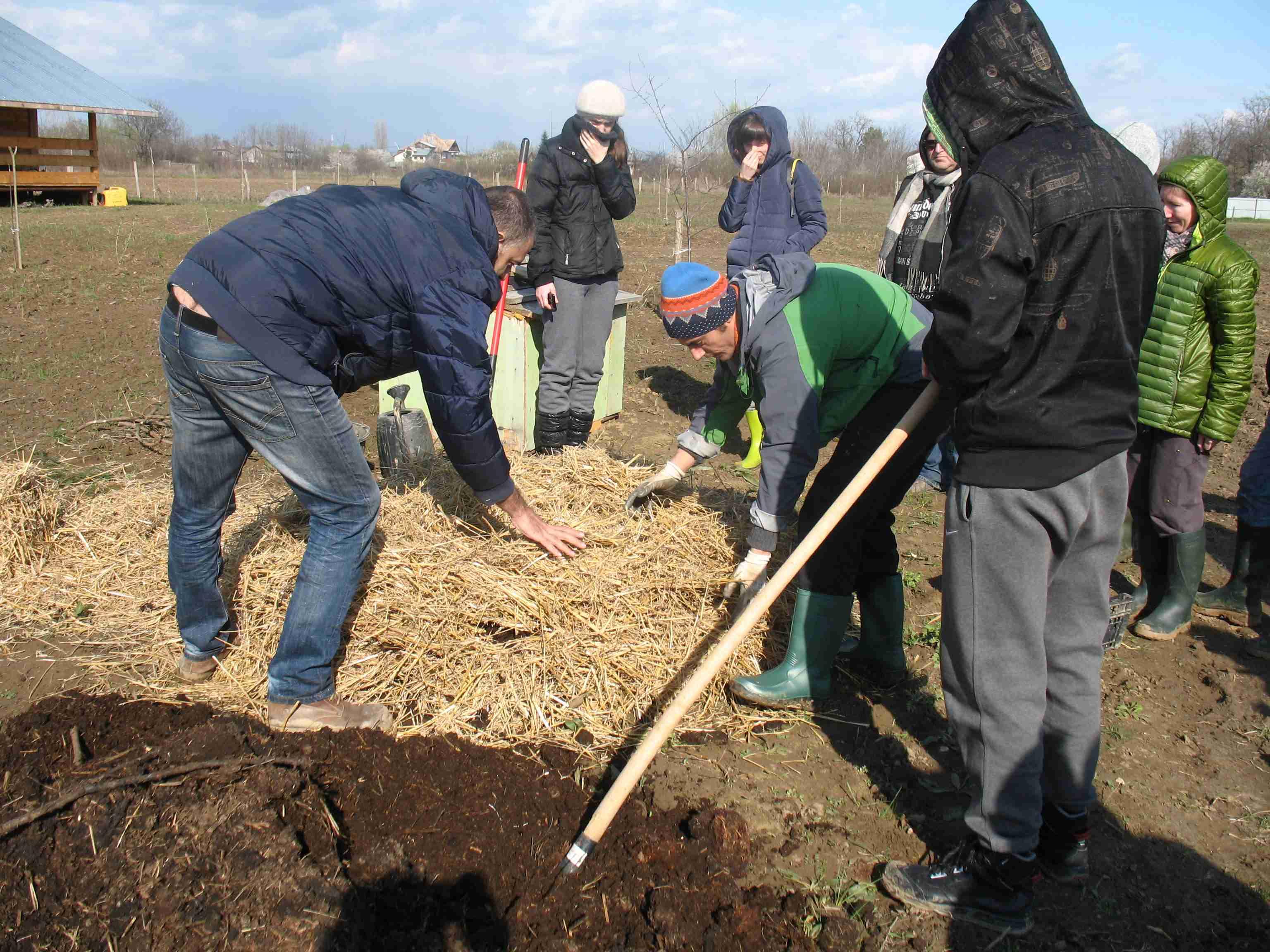 Compost termofil
