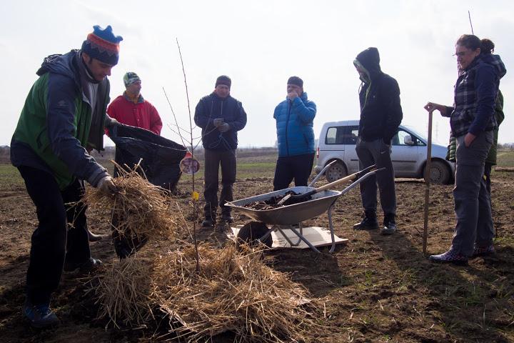 permacultura pom mulcit