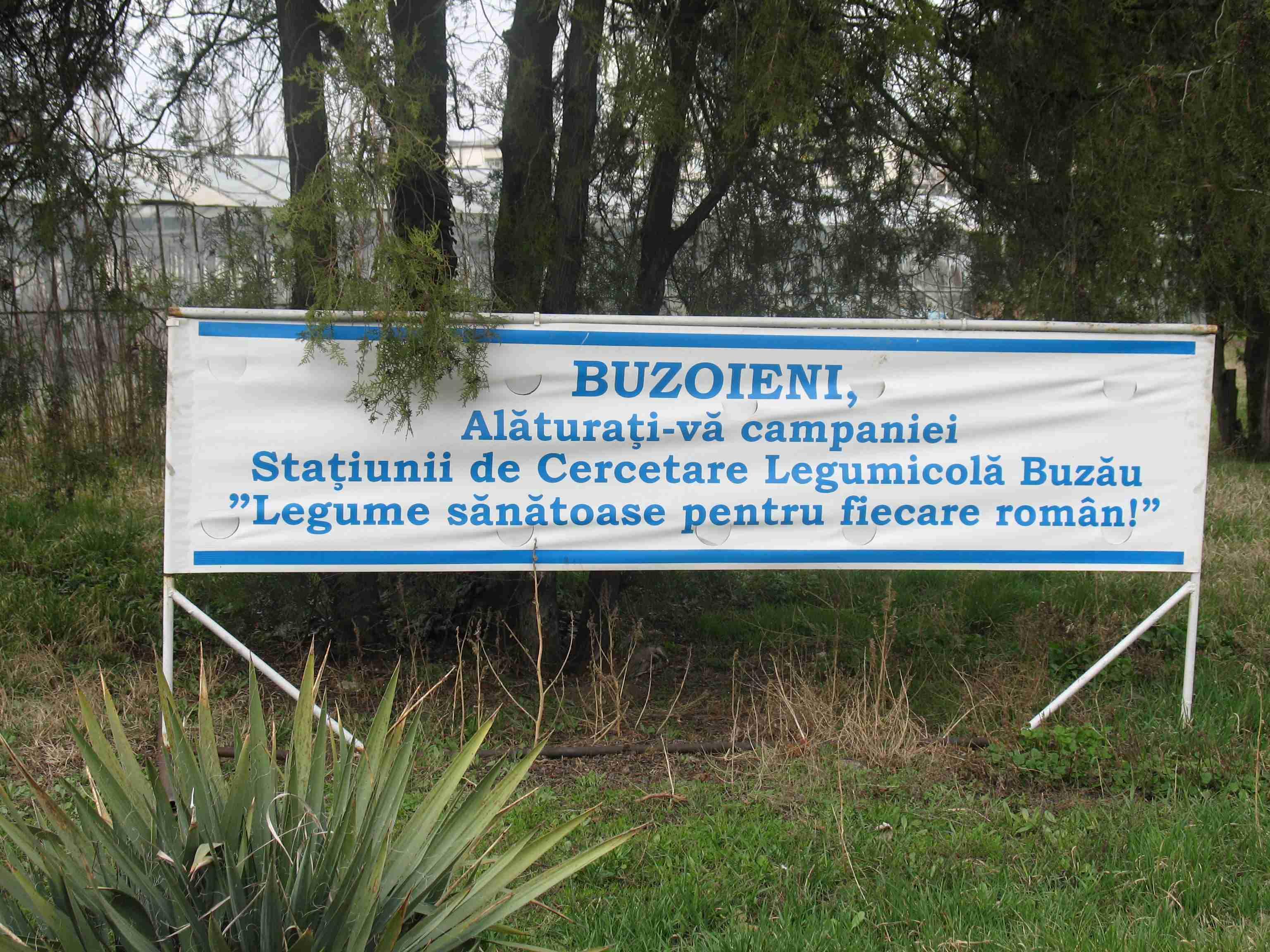 SCDL Buzau