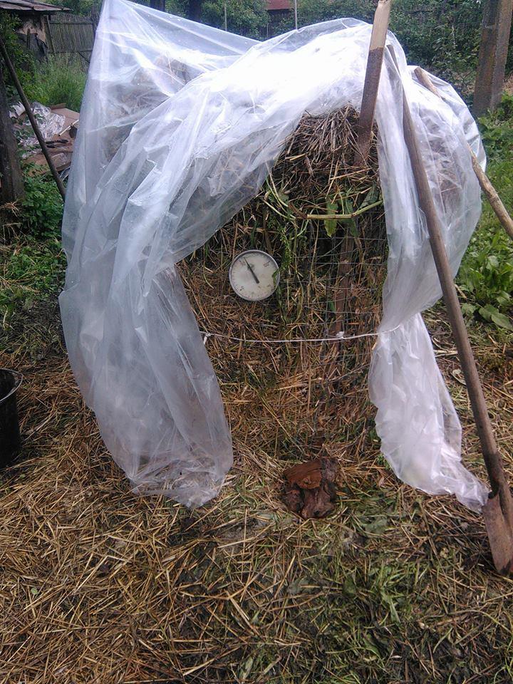 Compostul - un fertilizator ecologic excelent
