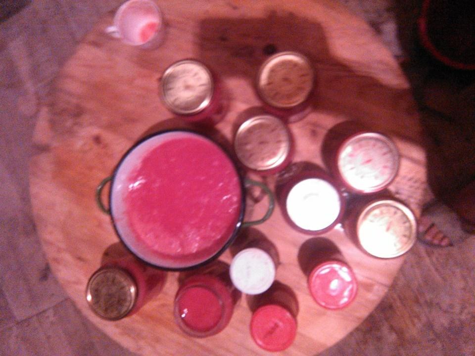 Suc de rosii din gradina fara sapa