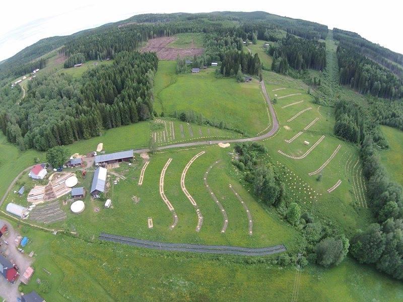 Stagiu de 6 luni la Ridgedale Permaculture, ferma suedeza