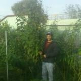 In vizita la gradina lui Dan, gradina ecologica la marginea Bucurestiului